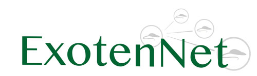 ExotenNet